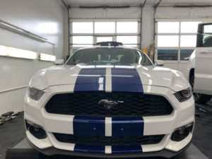 mustang custom vinyl graphics